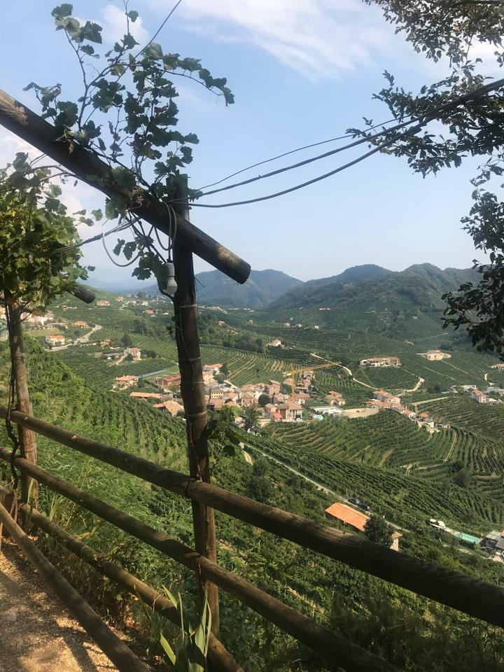 vista colline vigneti Osteria senz'oste